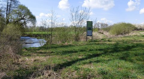 Ein Garten Für Fledermäuse Bund Naturschutz In Bayern Ev